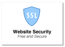 website-security